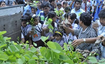 Kids to grow vegetables, fruits for midday meal scheme in UP