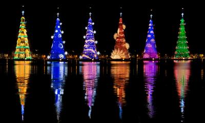 Rio de Janeiro lights up world's tallest floating Christmas tree
