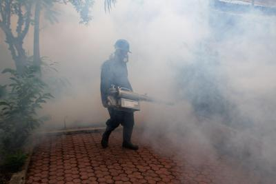 Sri Lanka to fight dengue virus with bacteria