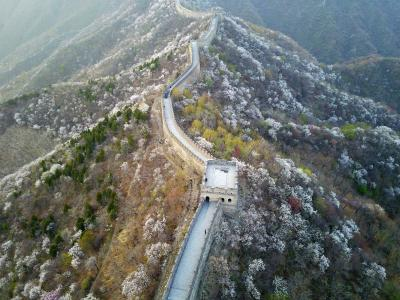 China plans to use AI, drones to protect Great Wall