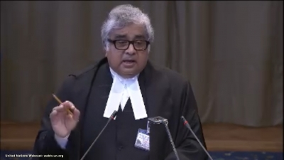 Pakistan sponsored Pulwama attack: Salve tells ICJ