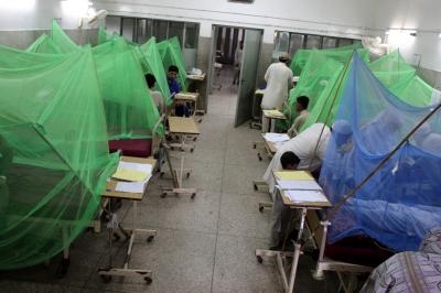 Pak reports surge in dengue fever cases amid outbreak fears