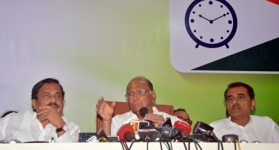 Sharad Pawar: No investments taking place in India due to shabby economy