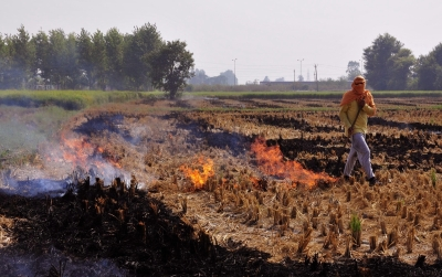 Stubble burning: NGT notice to Centre over aid to Punjab
