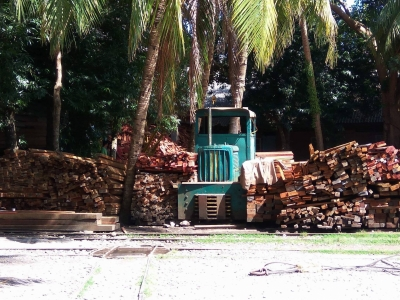 Chatham: A stroll through Asia s oldest saw mill in the Andamans (Travel Feature)