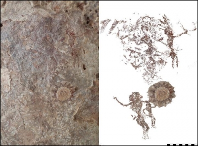 Cave paintings treasure trove found on Indonesian island