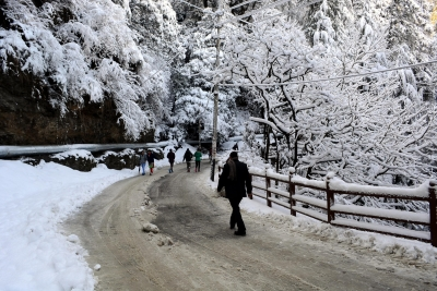 Shimla, nearby areas wrapped in snow