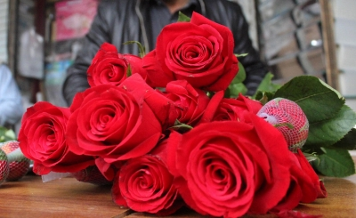 5.2 mn roses exported from Bengaluru Airport for V-Day