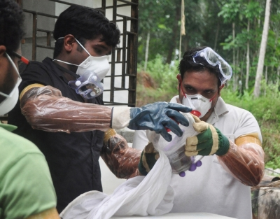 Tests rule out bats as source of Nipah virus