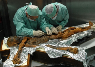 Otzi the Iceman s last meal reveals remarkably high fat diet: Study