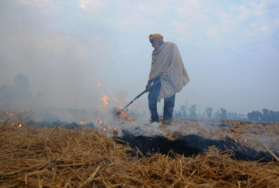 Punjab CM asks farmers not to resort to stubble burning