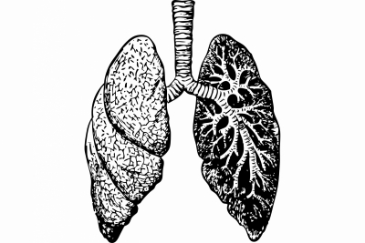 lungs Covid
