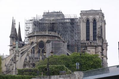 No French trees big enough to rebuild Notre Dame roof
