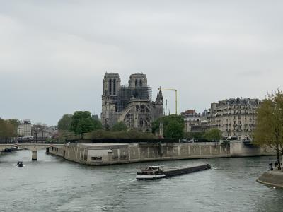 Notre Dame fire: France plans architecture contest (Lead)