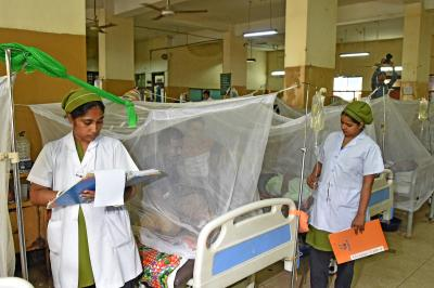 12,000 dengue patients hospitalised in Bangladesh