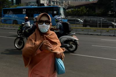 Air pollution linked to premature death risk