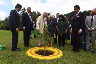 UK royals undergo wellness treatment in B'luru (Lead)