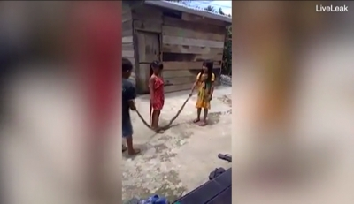 Twitter video on Vietnamese kids using dead snake as skipping rope