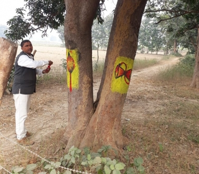 UP man invokes the Gods to save trees