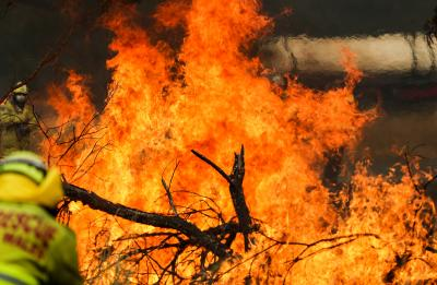 Aus offers support for bushfire-affected businesses