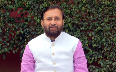 Prakash Javadekar seeks report on elephant death in Kerala