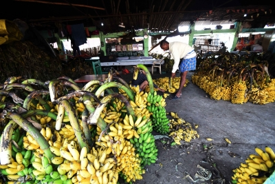 Fruit vendor held for licking bananas in UP