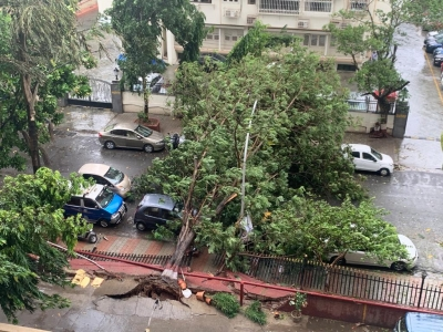 M'rashtra cyclone kills 6, Raigad bears the brunt (Ld)
