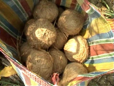 Seven bombs found in Bikru village in police search