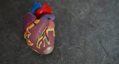 Common diabetes drug linked to low risk of major heart issues