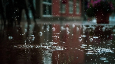 Heavy rains forecast in Bengal in next 24 hours