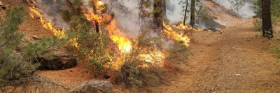 Extreme wildfire in California prompts multiple mandatory evacuations
